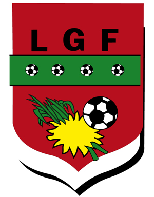 Ligue-football-guadeloupe300x384